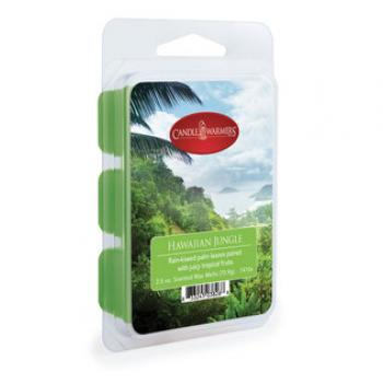 Candle Warmer Classic Duftwachs   - Hawai Jungle