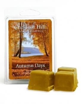 CHESTNUT HILL Candles Soja Duftwachs 85 g AUTUMN DAYS