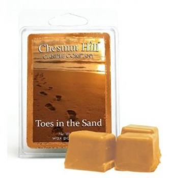 CHESTNUT HILL Candles Soja Duftwachs 85 g TOES IN THE SAND