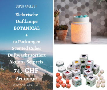 Candle Warmers elktrische Duftlampe Botanical inclusive 10 Packungen Scented Cubes Düfte