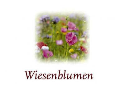 Scented Cubes Duft Wiesenblume